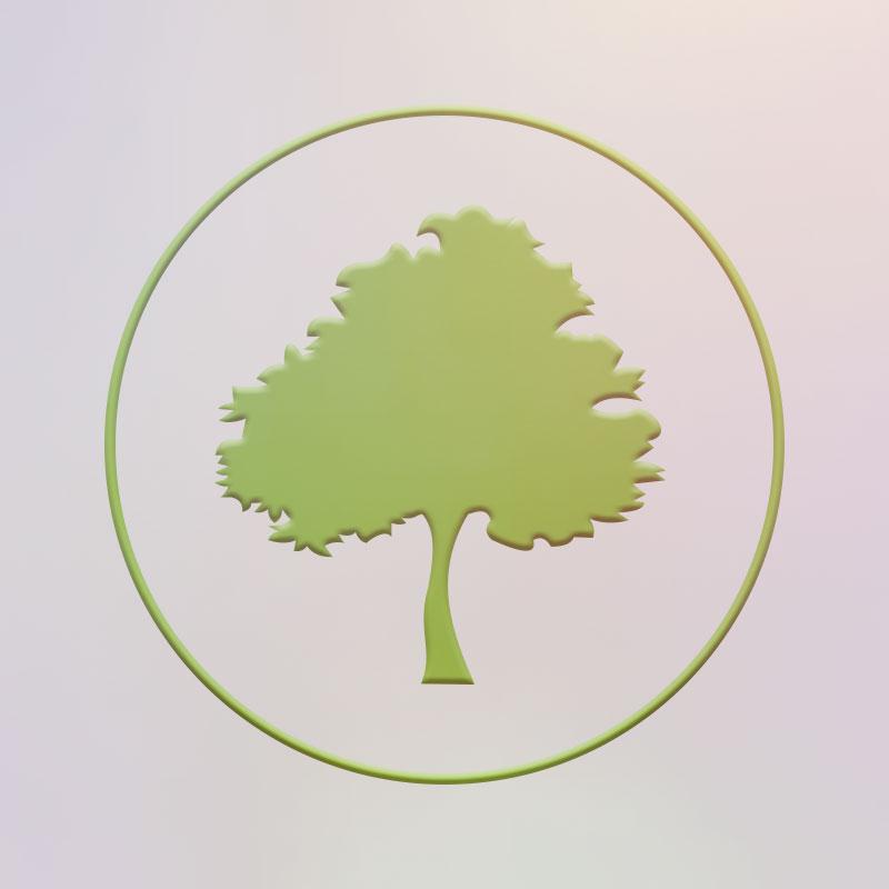 Secretaría de Ecología del PVEM CDMX