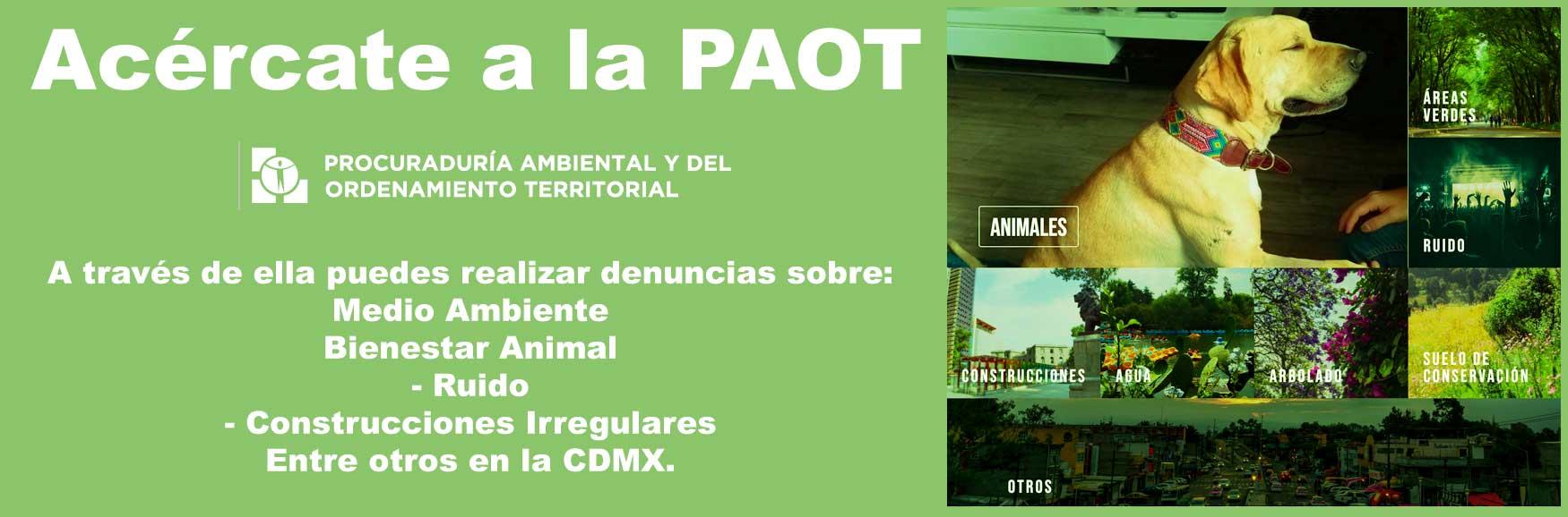 PAOT CDMX